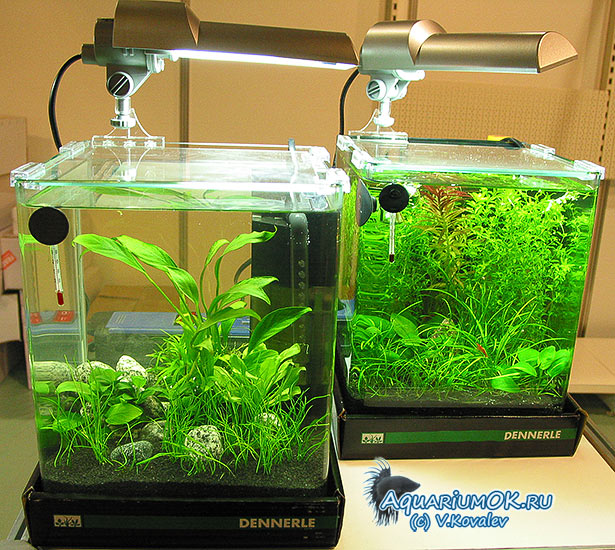 Освещение в нано аквариум