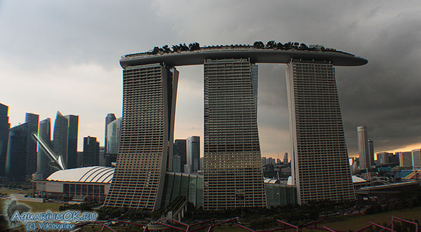 Marina Bay Sands and Sands Expo and Convention Centre