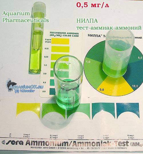 Тест на аммиак в аквариуме своими руками
