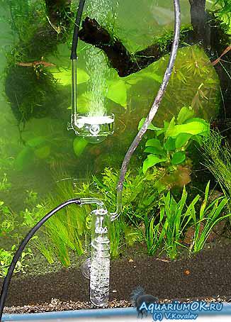 Углекислый газ в аквариуме как сделать