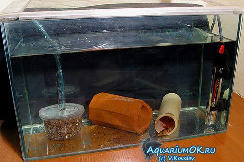 Своими руками фильтры для аквариума